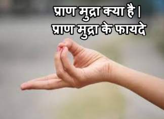 प्राण मुद्रा क्या है | प्राण मुद्रा के फायदे | Prana Mudra Benefits In Hindi