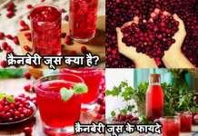 क्रैनबेरी जूस क्या है| क्रैनबेरी जूस के फायदे| Cranberries juice Khane Ke Fayade