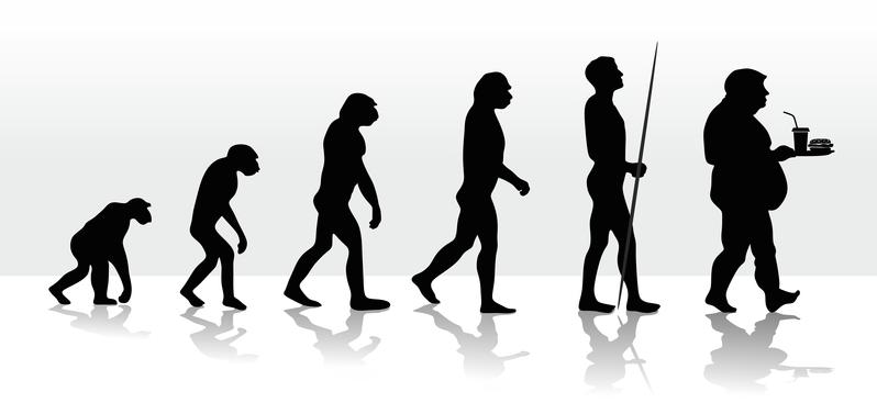 evolution-3