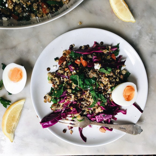 LENTIL AND FREEKAH SALAD WITH APRICOTS FETA AND RED CABBAGE 7