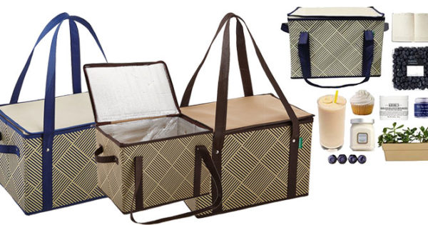 Earthwise Collapsible Reusable Box Shopping Bag Review