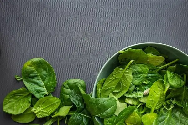 spinach for low carb diets