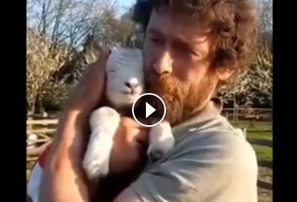 Animals And The People They Love – This Will Warm Your Heart!