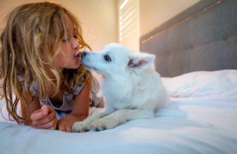 Ways to Help Children Deal With the Loss of a Pet