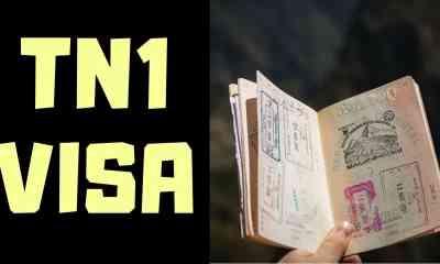 TN-1 VISA