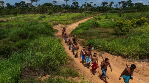 Invading loggers and ranches, the indigenous Amazon warriors
