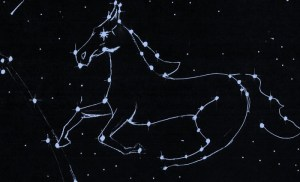 Glorious White Horse Constellation