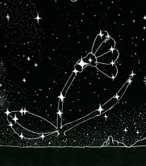 The Flower of the Field Constellation Signs Of Heaven.org