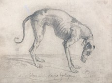 http://commons.wikimedia.org/wiki/File:John_Sell_Cotman_-_A_Starved_Greyhound_-_Google_Art_Project.jpg