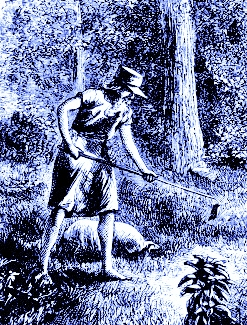 https://commons.wikimedia.org/wiki/File:Johnny_Appleseed.gif