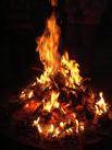 Campfire Pinecone - Wikipedia - Share-alike license