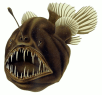 http://en.wikipedia.org/wiki/File:Humpback_anglerfish.png