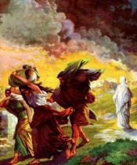 http://christianimagesource.com/lot_bible_g114-lot_bible__image_2_p440.html