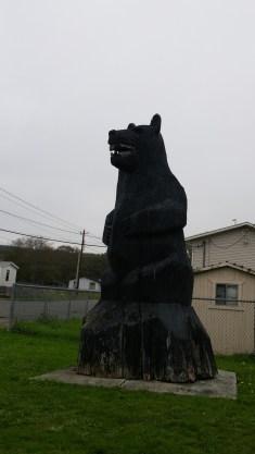 Taholah bear