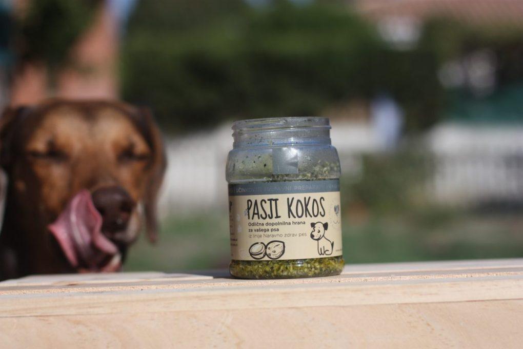 Thehempydog-cocoperro-Ginger