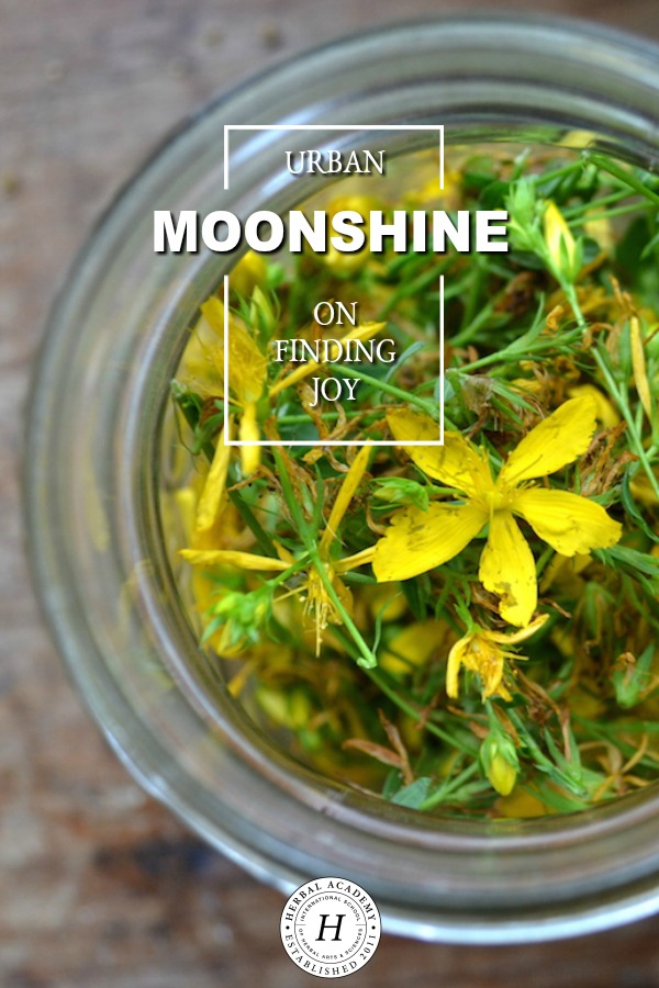 Urban Moonshine on Finding Joy | Herbal Academy | Join guest speaker, Jovial King, as she speaks on using herbs for bring joy into everyday life.