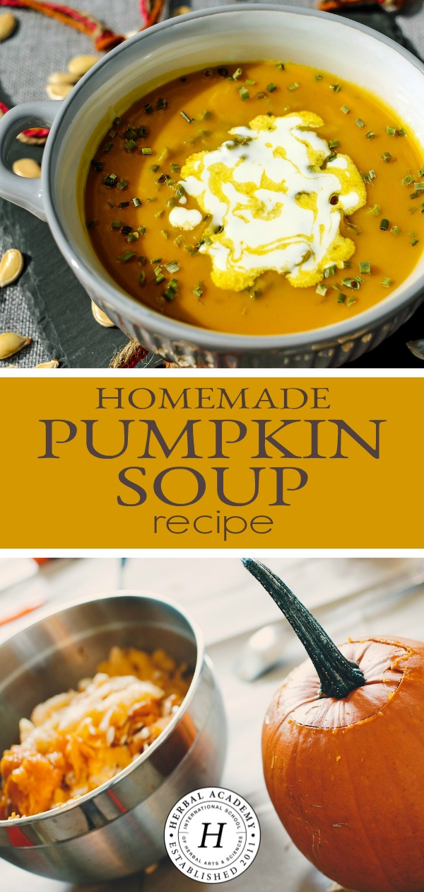 Homemade Pumpkin Soup Recipe | Herbal Academy | Healthy, vegetarian homemade pumpkin soup recipe created by the director at the Herbal Academy of New England, Marlene Adelmann.