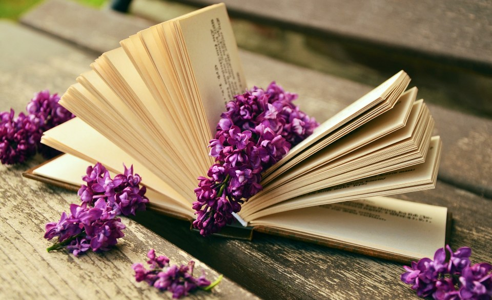 liliac-book