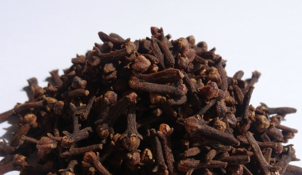 what is clove