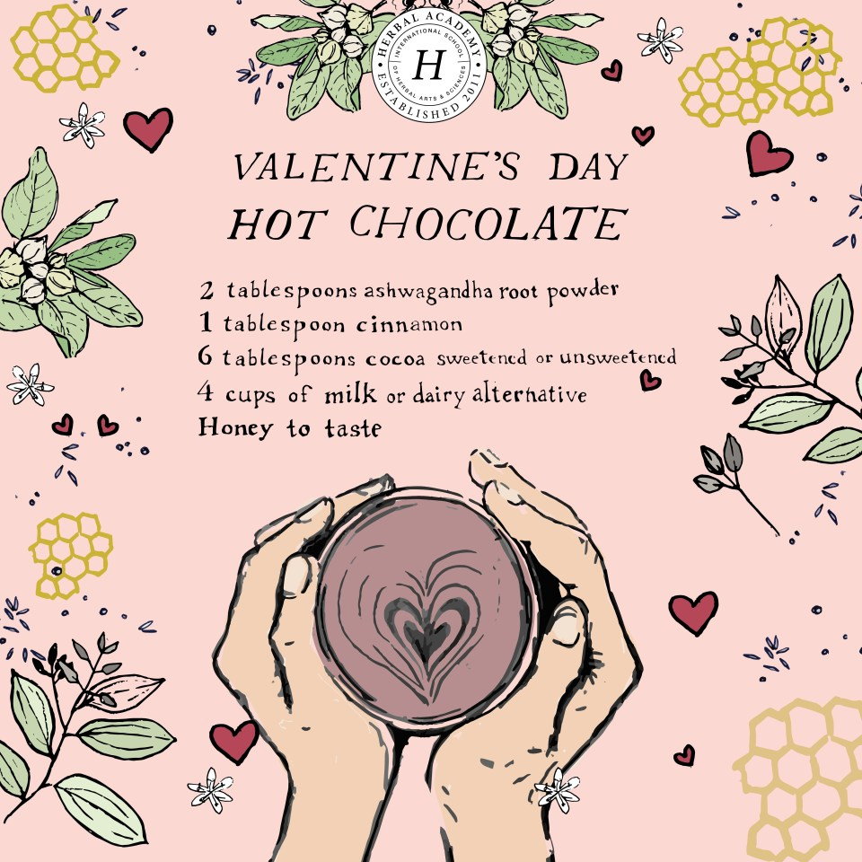 Valentine's Day Hot Chocolate | Herbal Academy | This Valentine's Day Hot Chocolate is melt-in-your-mouth delicious! This easy homemade hot chocolate recipe can be made into an adult friendly beverage.