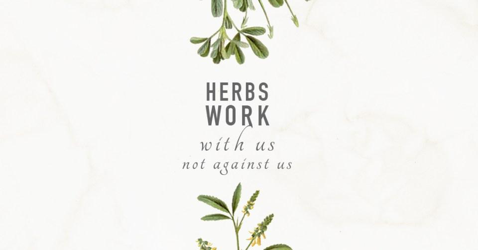 herbs work