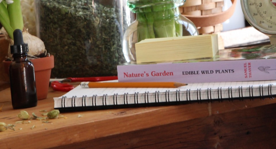 Is Becoming A Clinical Herbalist In Your Future?   Herbal Academy   Learn about the clinical herbalist — what they are, what they do, and how you can begin your journey with the Herbal Academy!