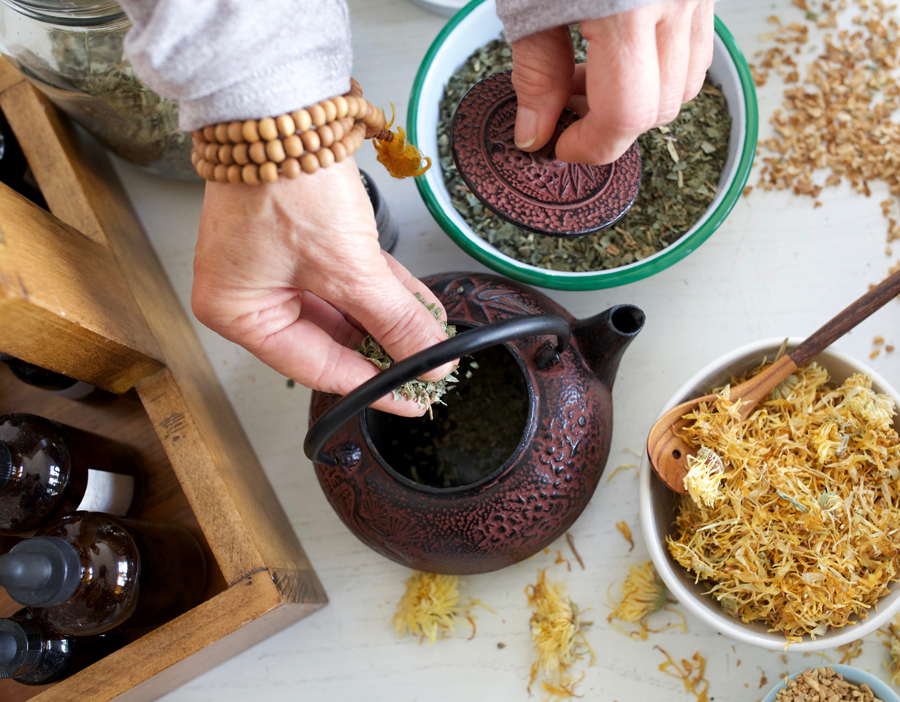 Home Study Courses in Shamanic Herbalism | Crow's Daughter