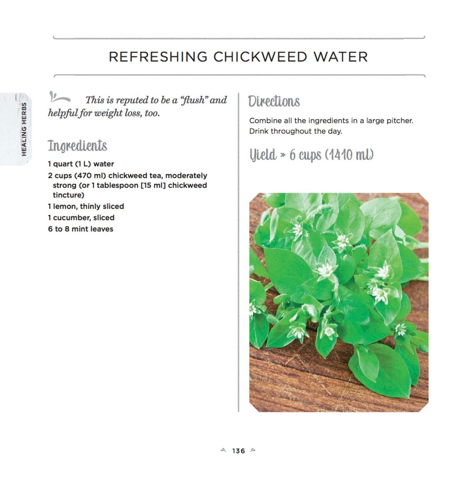 Healing Herbs recipe – Chickweed Water