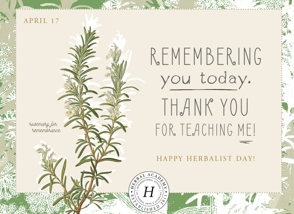 Free Thank you Cards for Happy Thank an Herbalist Day card by Herbal Academy - Rosemary for remembrance