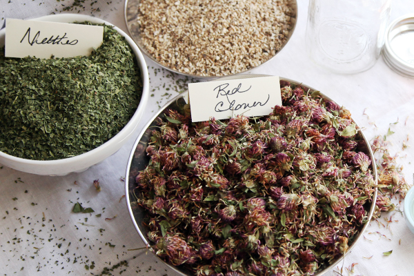 Online Intermediate Herbal Course - Learning the Basics of Herbalism