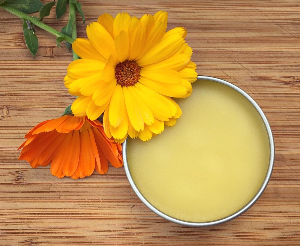 How To Make Calendula Salve Herbal Academy