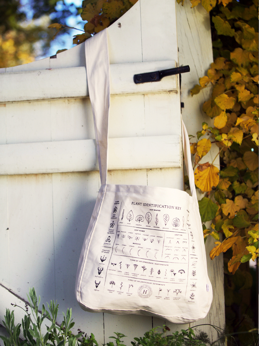 The Plant identification key tote bag by Herbal Academy