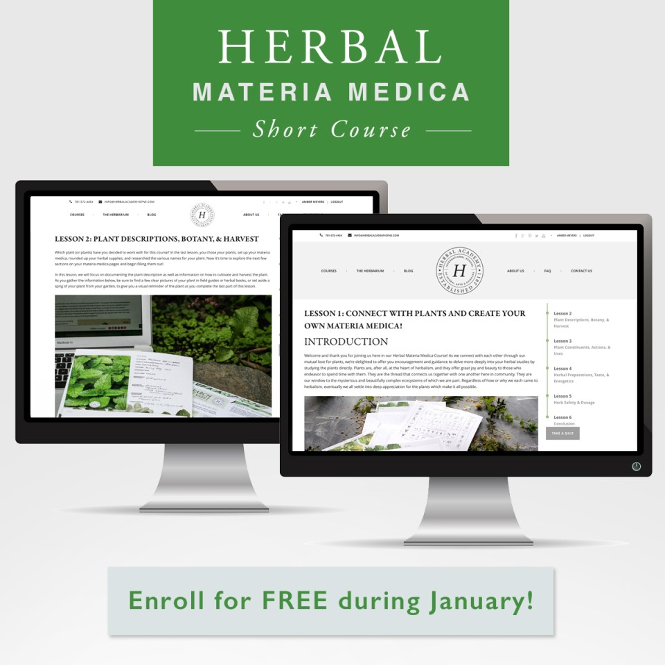 https://theherbalacademy.com/product/herbal-materia-medica-course
