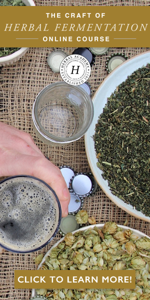 The Craft of Herbal Fermentation Course by Herbal Academy