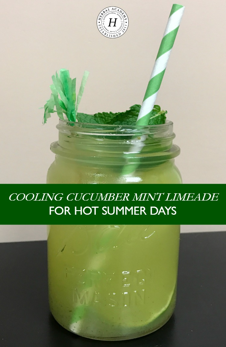 Cooling Cucumber Mint Limeade For Hot Summer Days | Herbal Academy |Stay hydrated this summer with this cooling Cucumber Mint Limeade! Using just three ingredients, this is a summer recipe that your family will love!
