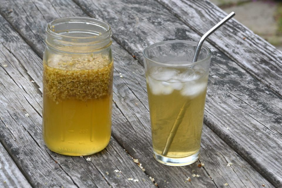 3 Cooling Herbal Teas For Summer   Herbal Academy   Looking for ways to beat the summer heat? Find relief with these 3 cooling herbal teas for summer that your family and friends will love!