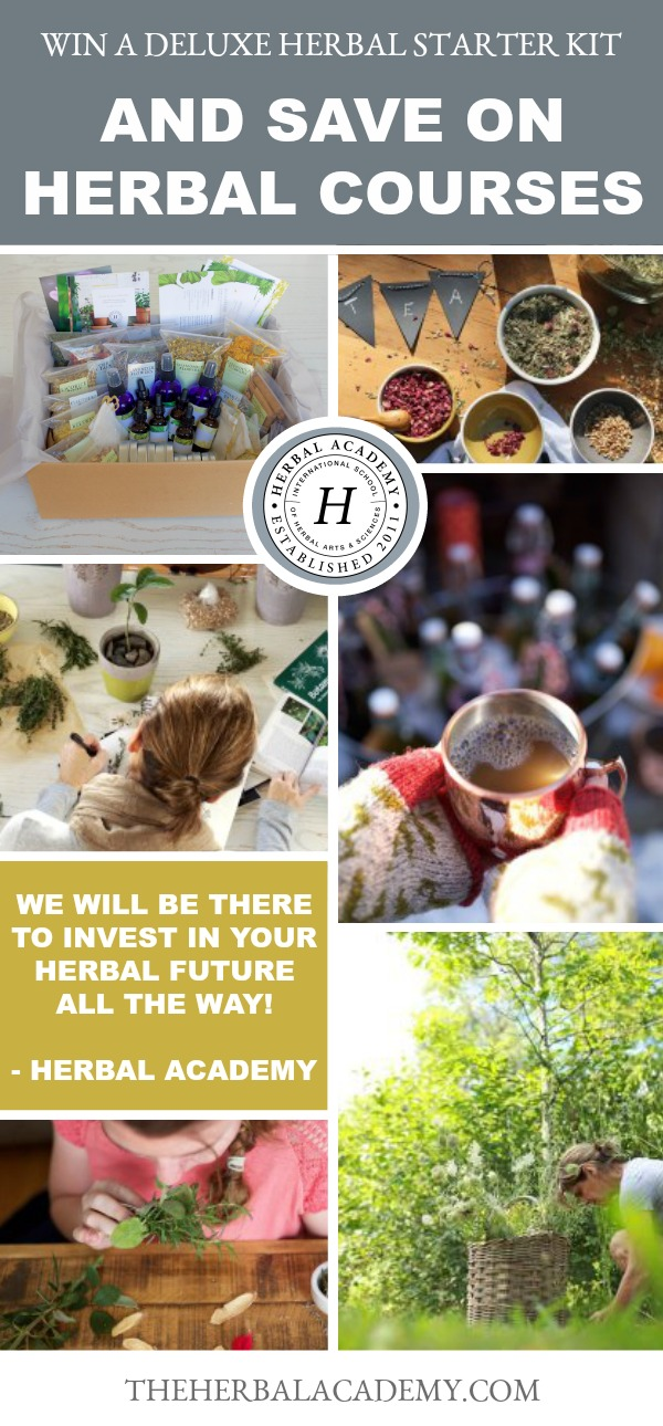 Here's How To Win A Free Deluxe Herbal Starter Kit And Save On Herbal Academy Courses and Packages! | Herbal Academy | Our Holiday Sale is here. Learn how you can save on all our herbal courses and paths and enter to win one of our Deluxe Herbal Kits as well!