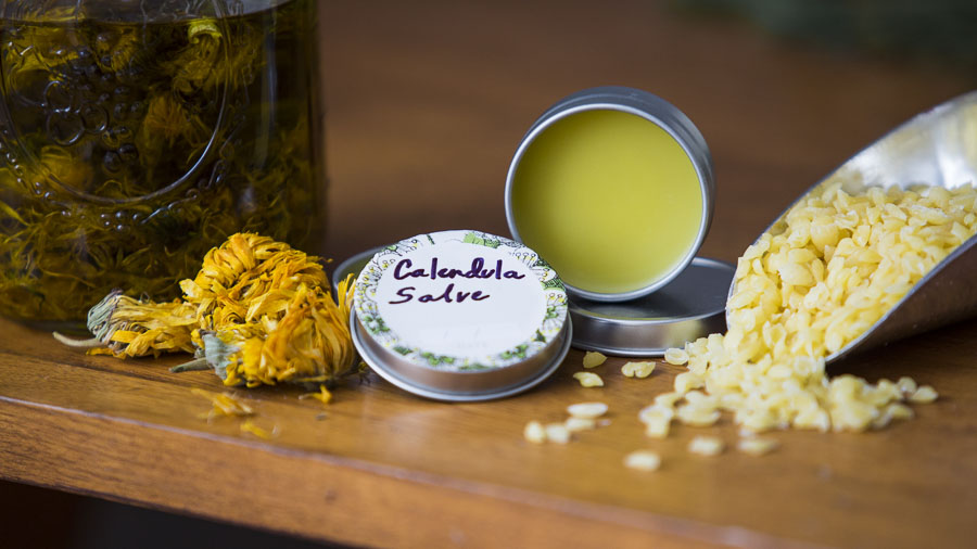 Video: How To Make A Calendula Salve | Herbal Academy | Would you like to learn how to make salve in the comfort of your own home? In this short video we walk you through the steps to creating your very own calendula salve!