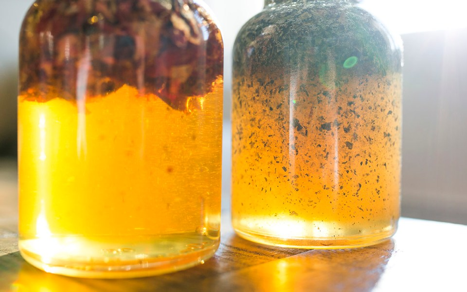 Video: How To Make An Herbal Honey | Herbal Academy | If you're interested in learning how to make your own herbal honey, we've made a short video that will walk you through the steps to creating your very own!
