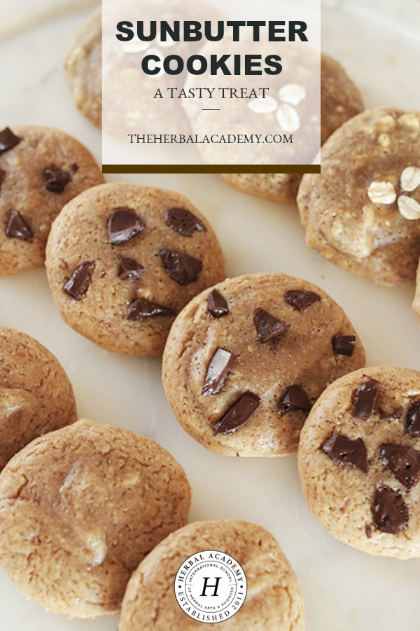 Sunbutter Cookies: A Tasty Treat | Herbal Academy | Are you looking for a simple and healthy winter treat? We have just the recipe for you! Try these tasty Sunbutter Cookies today!