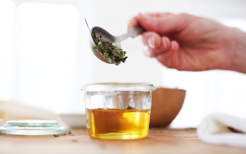 7 Ways To Use Tulsi Everyday   Herbal Academy   Since tulsi is becoming a more popular herb around the world, we've put together 7 ways you can use tulsi everyday at home.