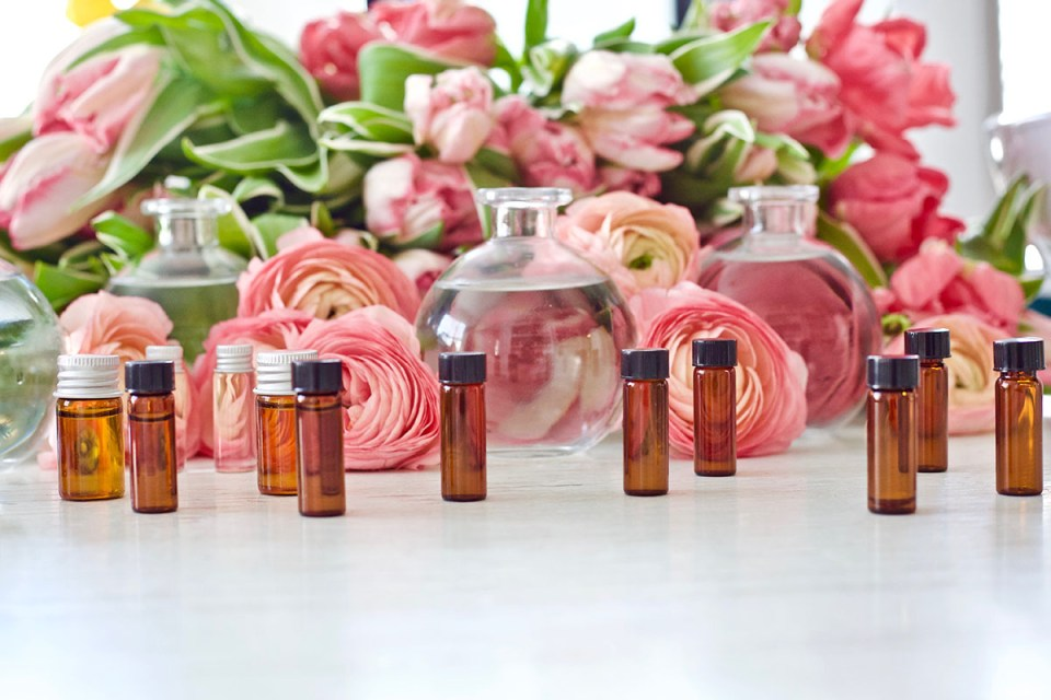 Essential Oil Myths And FAQs Answered | Herbal Academy | Separate fact from fiction when an aromatherapist addresses common essential oil myths and faqs in this post.