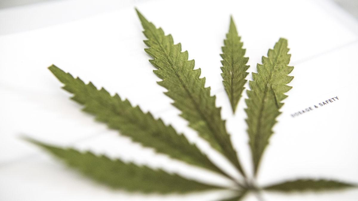 marihuana online upoznavanje izlazi s nekim starijim od 10 godina