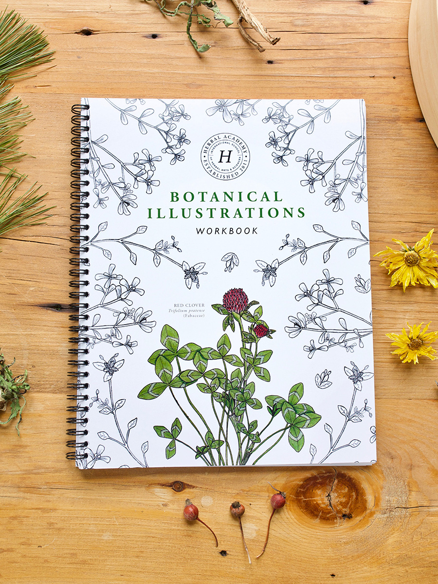 Botanical Illustrations Workbook by Herbal Academy