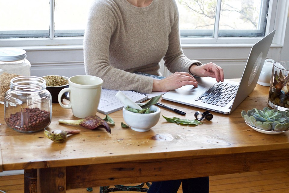 Curious About Becoming An Herbalist? Here's What You Need To Know First! | Herbal Academy | Have you ever dreamed about becoming an herbalist? Here's a free course explaining what being an herbalist is all about and how to plan your herbal path.