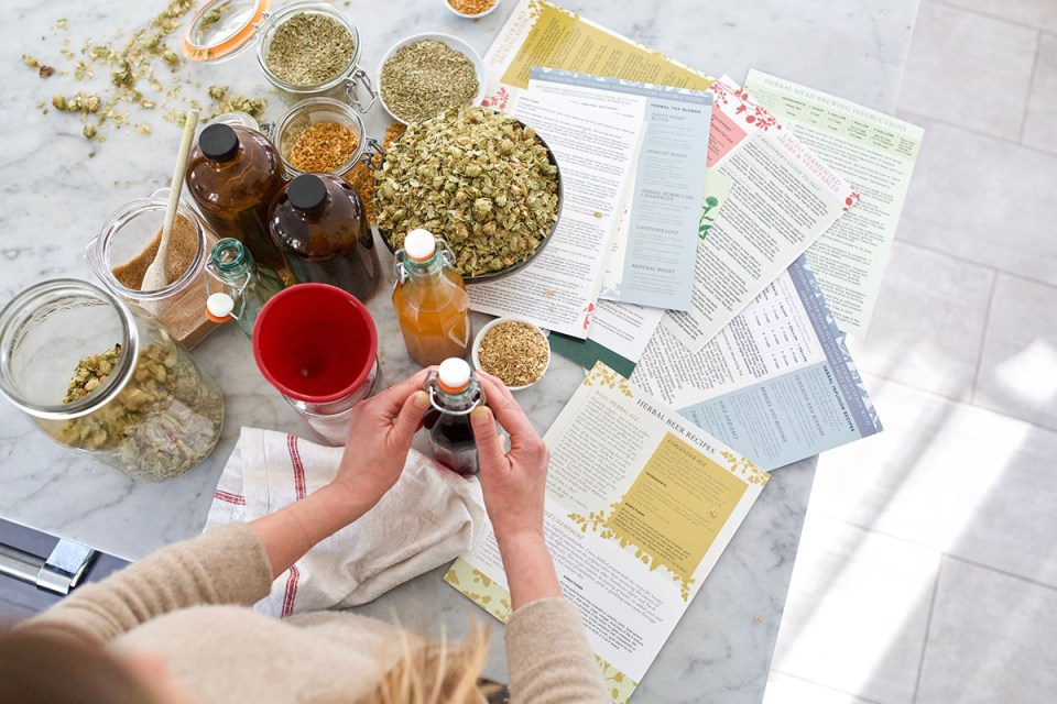 Find The Right Herbal Course For You With This Herbal Academy Course Comparison Chart! | Herbal Academy | Our Herbal Academy Course Comparison Chart will show you what is covered in each of our herbal courses and point you to the perfect course or path for you!