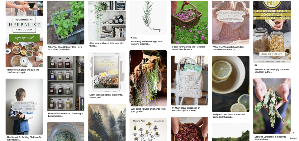 6 Herbal Vision Boards To Inspire Your Herbal Journey | Herbal Academy | If you're struggling to find who you are as an herbalist, here are six herbal vision boards to inspire you in finding your herbal identity and future goals.