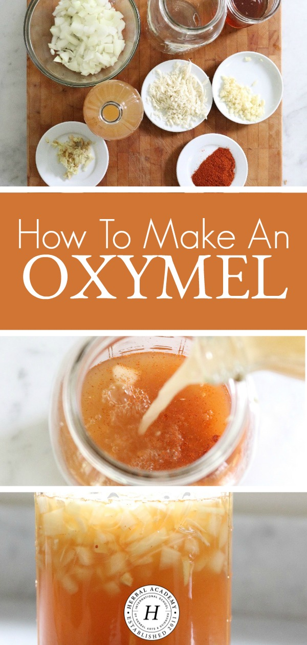 How To Make An Oxymel | Herbal Academy | A classic but often overlooked herbal preparation, oxymels have been used for ages and are a tasty and simple herbal preparation to make.