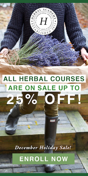2018 Holiday Sale on courses!