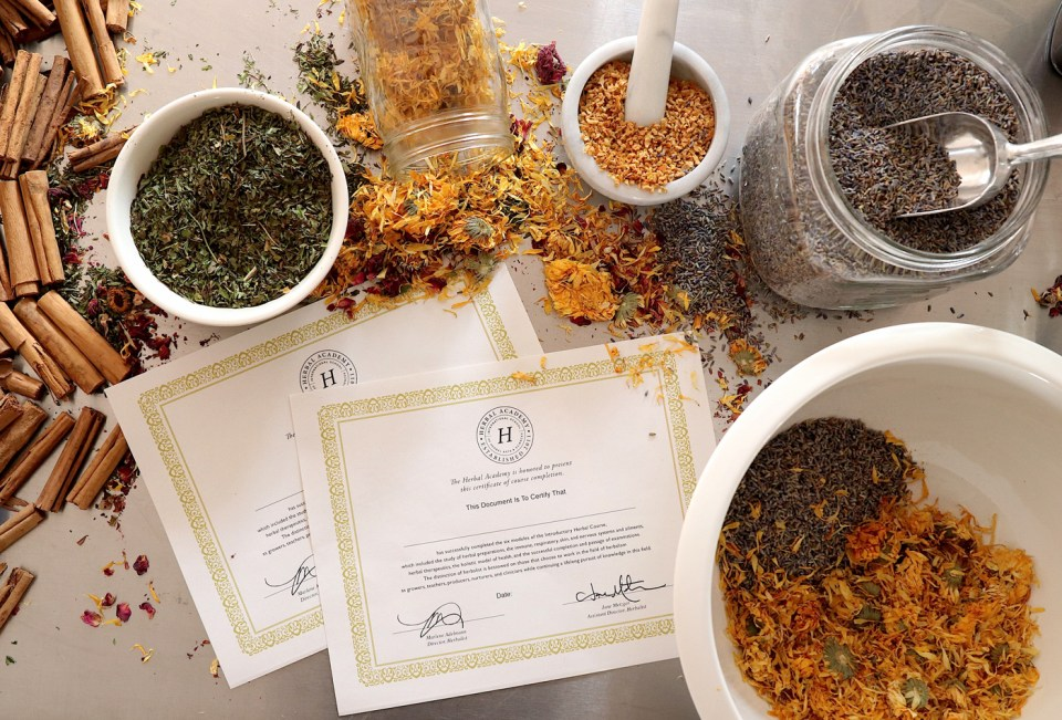 Herbal Academy: The Journey   Herbal Academy   This is the story of how a few herbalists turned a monthly herbal class into the Herbal Academy — an international school of herbal arts and sciences.